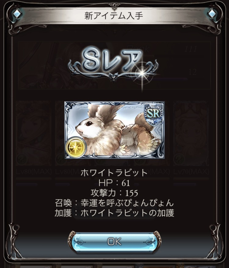 IMG_5102